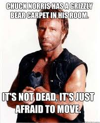 Chuck Norris Funny Meme - the 50 funniest chuck norris jokes of all time chuck norris facts