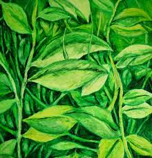 green plants forest plants green leaves 14x17 original pastel drawing