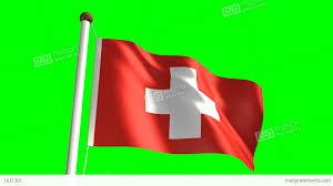 Puerto Rico Flag Gif Denmark Flag Stock Animation 1631301