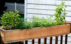 neoteric design herb container garden modest decoration 35 herb
