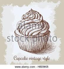 hand drawn illustration of tasty cupcake vector sketch stock