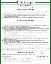 exle executive resume executive resume sles 2016 experience resumes