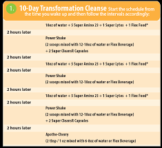 purium transformation purium 10 day cleanse and fasting tips