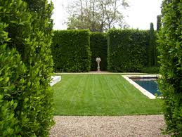 Down To Earth Landscaping by Speciality Landscaping Landscaping Ideas Santa Barbara Down To