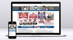 dino vite brand shepherd every brand needs a shepherd dinovite website
