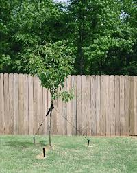tree stakes tree stake kit catalogclearance