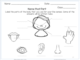 nyla u0027s crafty teaching the five senses worksheets activities and