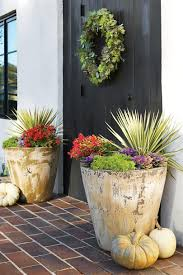 Outdoor Potted Plants Full Sun by Fall Container Gardening Ideas Southern Living
