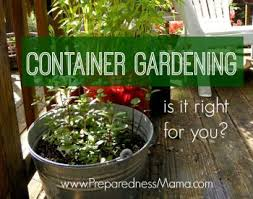 how to build a gutter garden preparednessmama