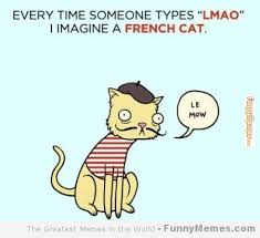 Meme Definition French - meme definition french 28 images french memes image memes at