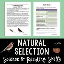 www whsd net evolution by natural selection worksheet evolution