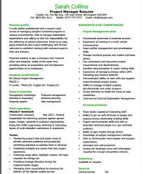 Sample Entry Level It Resume by 20 It Resume Templates In Pdf Free U0026 Premium Templates