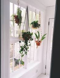 40 hanging plant ideas hanging plant and room