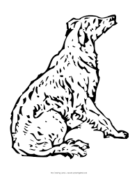 real animal coloring pages dog coloring pages 2017 z31 coloring page