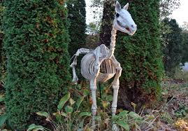 Halloween Horse Skeleton by Setting Up For Halloween The Martha Stewart Blog