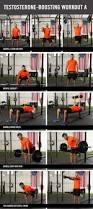 63 best ace upper body exercises images on pinterest upper body