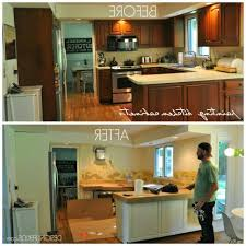 Kitchen Cabinets Construction Kitchen Build Your Own Kitchen Cabinets Intended For