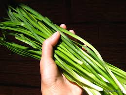 growing society garlic or garlic chives grow your own