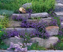 Big Rock Garden Rock Garden Landscaping Rock Gardens Pinterest Garden