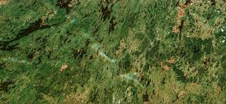 Russian Boreal Forest Disturbance Maps by Urthecast Offers A High Resolution View Of The World U0027s Forests On
