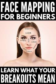 Face Acne Map Face Mapping 101 What Do Your Breakouts Mean And How Can You Stop