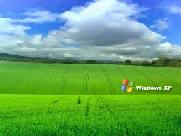 download wallpaper of windows xp gallery