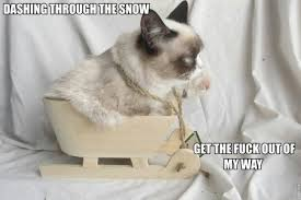 Grumpy Cat Snow Meme - tard rocks lol geek nerd fandom that s what she said or