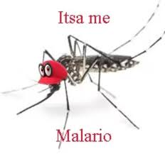 Mosquito Memes - the best mosquito memes memedroid