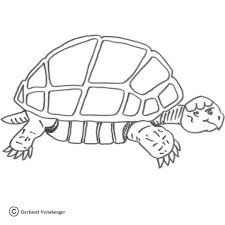 slow turtle coloring free printable coloring pages