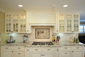 Kitchen Cabinet Glass Doors Range Hood Ideas Kitchen Traditional With Custom Cabinet Glass