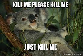 Please Kill Me Meme - kill me please kill me just kill me laid back koala make a meme