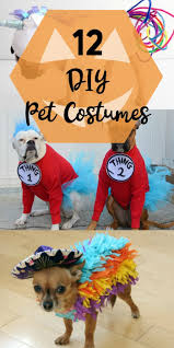 best 25 pet costumes ideas on pinterest pet halloween costumes