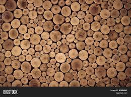 Teak Wood Round Teak Wood Stump Background Stock Photo U0026 Stock Images Bigstock