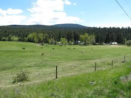 current listings of bc farms and ranches for sale farmrealtor ca