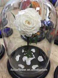 rose in glass tubes rose in glass tubes suppliers and