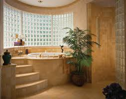 Glass Block Bathroom Ideas Custom Home Master Bath With Soaking Tub And Snail Shower