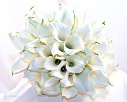 calla lilies bouquet 50 wonderful white calla bouquet beauty of wedding