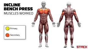 How To Do A Incline Bench Press Do The Incline Bench Press For A Stronger And Bigger Chest With