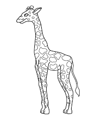3 outstanding giraffe coloring pages ngbasic