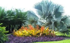 Small Tropical Garden Ideas Tropical Garden Design Be Equipped Garden Design Be