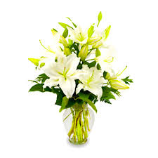 flower shops in las vegas voted best florist and flower shop in las vegas by readers of las