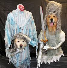 headless ghost dogs in costume diy crafts pinterest dog