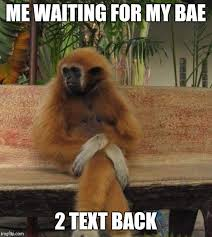 Waiting For Text Meme - waiting monkey blank template imgflip