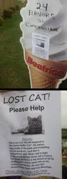 Lost Cat Meme - battle cat missing irl troll posters know your meme