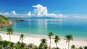 download wallpaper 1600x900 tropics sea sand summer