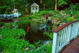 creating a backyard retreat that refreshes the soul and spirit