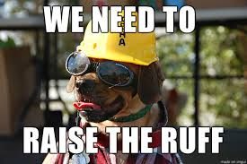 Construction Memes - cool construction dog meme on imgur