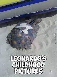 Ninja Turtle Meme - teenage mutant ninja turtles by blazerdon meme center
