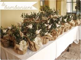olive gifts wedding gifts olive tree pots rustic wedding