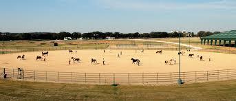 rv ranch u2013 downunder horsemanship